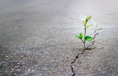 Don Pino Esposito - La speranza e' la miglior risposta agli ostacoli